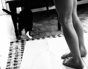 So called hand painting did not work, but feet and Cat did