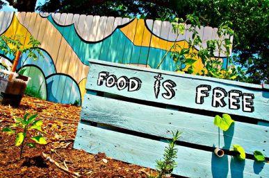 Food Is Free I